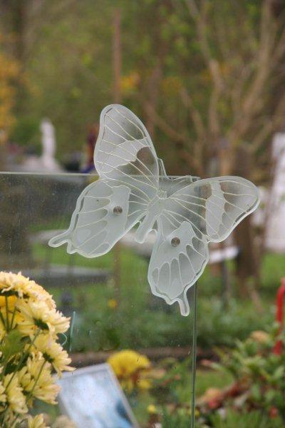 Eenvoudige vlinder